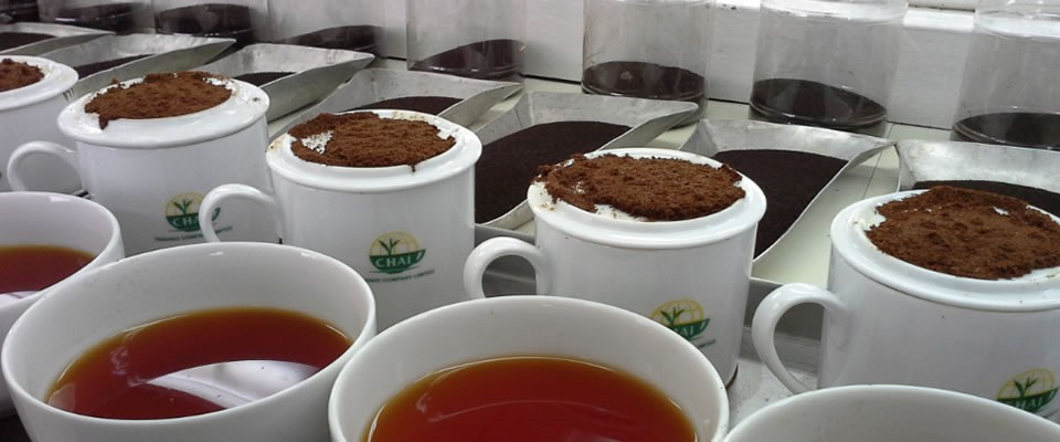 Tea Trading for Exports Markets